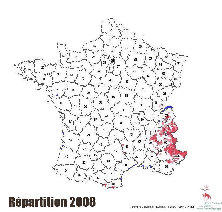 repart2008