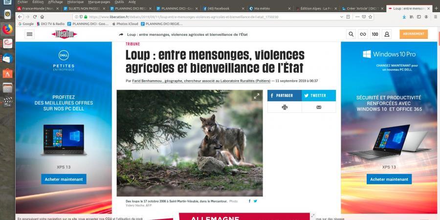 Hautes-Alpes/Loup : les jeunes agriculteurs «furieux» contre le journal Libération | D!CI TV & Radio