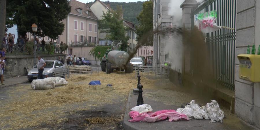Réunion loup à Lyon : pas de tirs de défense autorisés en coeur de parc, les éleveurs mécontents | D!CI TV & Radio
