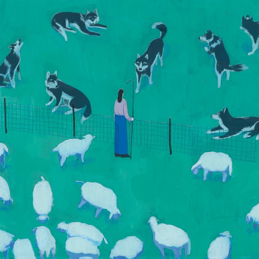 Vivra-t-on un jour en paix avec le loup?