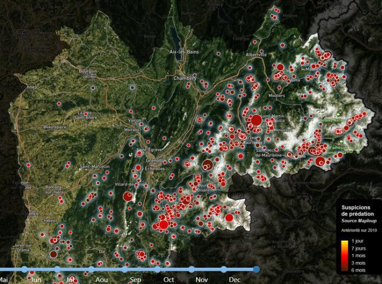 Une carte des attaques en quasi-temps réel   Réussir Pâtre : Le média des éleveurs de moutons