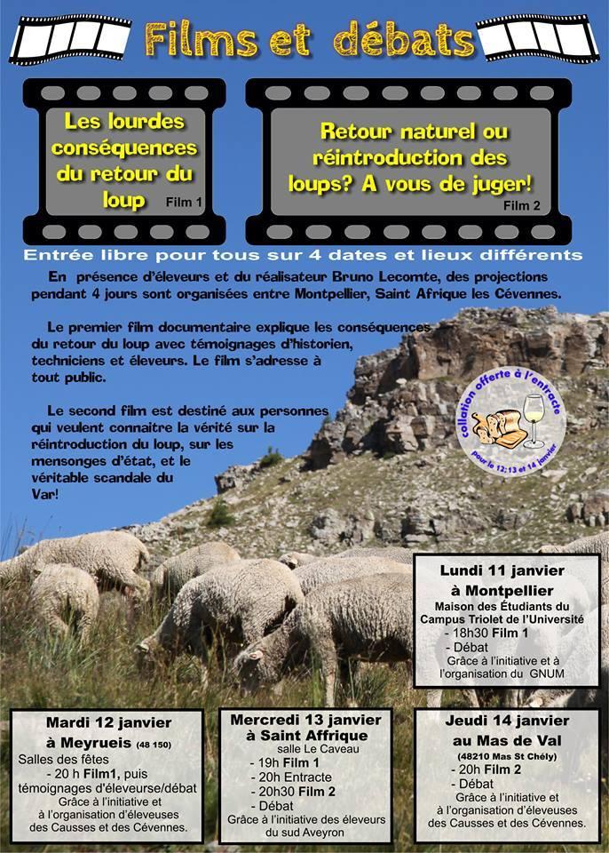 Nouvelle diffusion «Les lourdes conséquences du retour du loup» et «Retour naturel ou réintroduction des loups? A vous de juger!»
