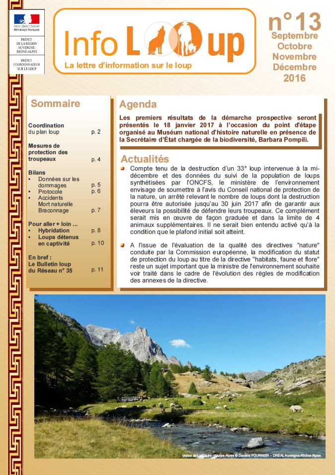 Info Loup n°13