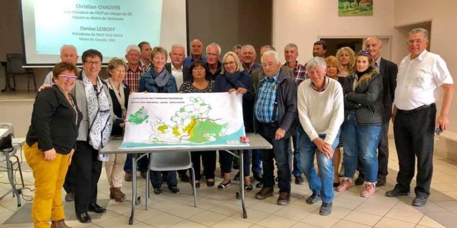 Hautes-Alpes : la sénatrice débat du déclassement du loup de la convention de Berne | D!CI TV & Radio