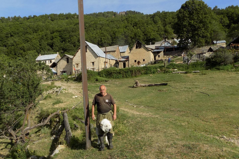 «Sommes-nous le garde-manger du prédateur?»: une attaque de loup au hameau d'Argenton fait du bruit – Nice-Matin