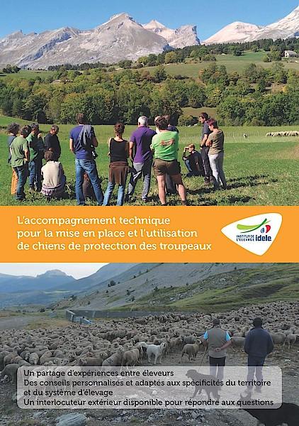 L'accompagnement technique pour la mise en place et l'utilisation de chiens de protection des troupeaux