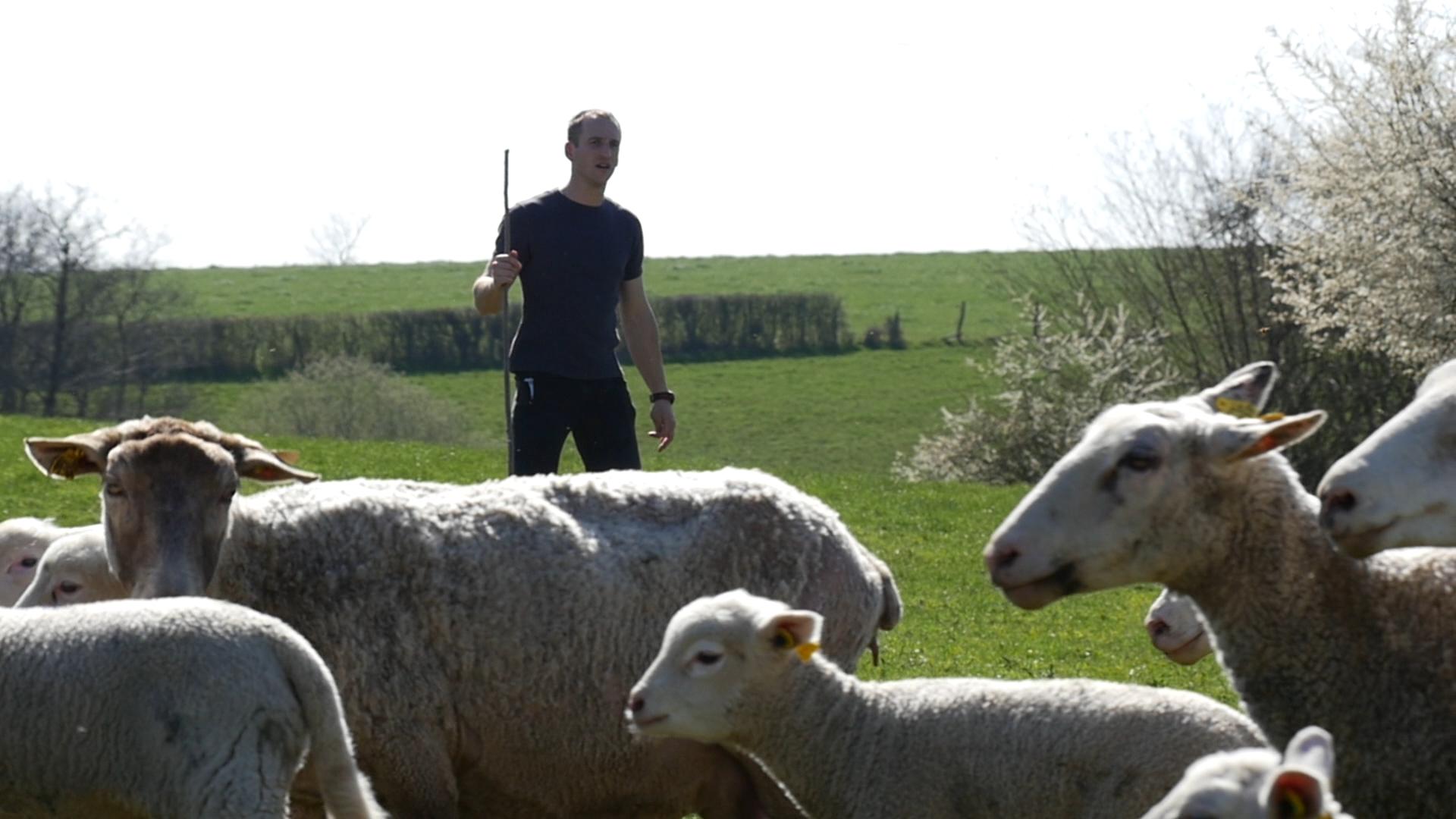 Témoignage d'Alexandre : Les moyens de protection du Plan Loup inadaptés à la Saône et Loire